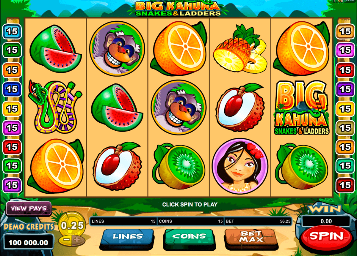 big kahuna snakes and ladders microgaming online spielen