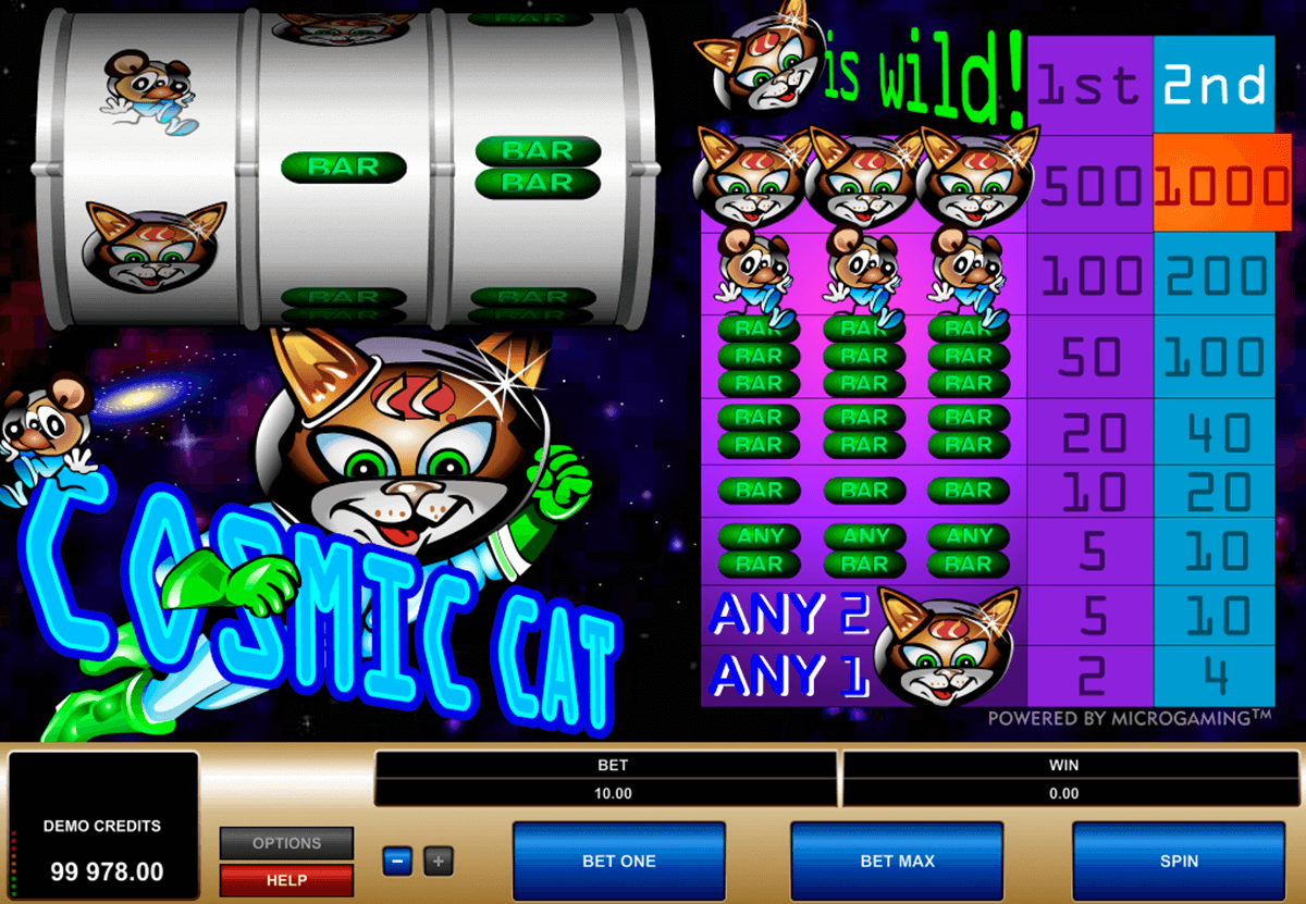 cosmic cat microgaming online spielen