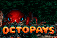 logo octopays microgaming casino spielautomat