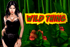 logo wild thing novomatic