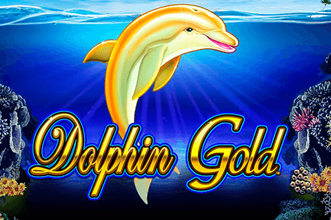 logo dolphin gold lightning box